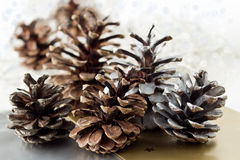 Christmas pine cone decoration Stock Photos