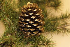 Christmas pine cone. Christmas decoration pine cone close-up Royalty Free Stock Photo