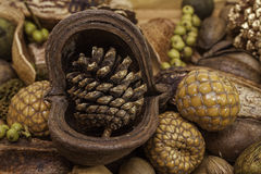 Christmas pine cone nuts and berries Royalty Free Stock Photography