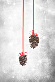Christmas pine cone ornaments. In snow flurries Stock Photos
