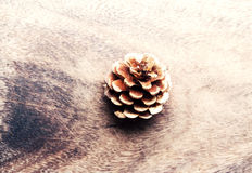 Christmas pine cone over wooden board Stock Image