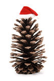 Christmas pine cone and xmas hat royalty free stock photo