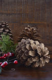 Christmas Pine Cones Decorations Royalty Free Stock Images