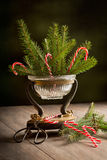 Christmas Pine Royalty Free Stock Image