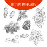 Christmas pine, fir tree branches and cones vector sketch Royalty Free Stock Photography