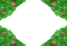 Christmas Pine needles and cones green frame Stock Images