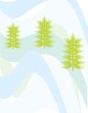 Christmas pine and snow wave Stock Image