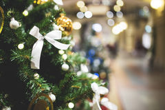 Christmas pine in trading hall. Royalty Free Stock Photography