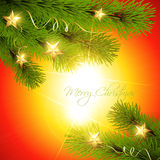 Christmas pine tree Royalty Free Stock Image