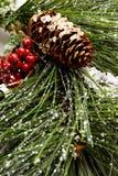 Christmas pine tree royalty free stock photo