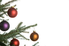 Christmas pine-tree stock photography
