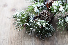 Christmas pine tree branch Stock Images