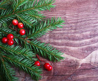 Christmas pine tree branch Royalty Free Stock Images