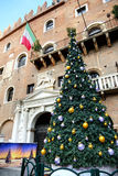 The Christmas pine tree decoration in Verona city Stock Photos