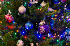 Christmas pine tree Stock Images