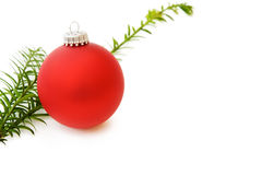 Christmas pine tree and red bauble. Celebrating Christmas with traditional red bauble and pine tree branch. Isolated on white background Royalty Free Stock Images