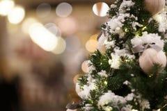 Christmas pine tree with snow Royalty Free Stock Photos