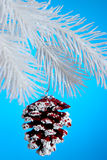 Christmas Pinecone Royalty Free Stock Photo