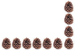 Christmas pinecones closeup over white Royalty Free Stock Images