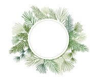 Christmas plant vector circle border with fir and pine branches, evergreen wreath and corners frames. Foliage illustration