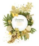 Christmas plate Stock Photos