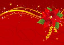 Christmas poinsettia background Royalty Free Stock Images