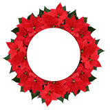 Christmas poinsettia flowers wreath and space for text Royalty Free Stock Photos