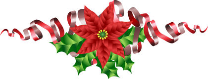 Christmas Poinsettia Holly and Stock Photo