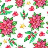 Christmas poinsettia seamless pattern, watercolor flower, holly berries, vector illustration