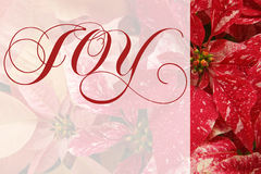 Christmas poinsettias with joy word Royalty Free Stock Images