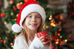 Christmas Royalty Free Stock Photography