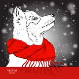The christmas poster with the dog portrait in winter scarf. Vector illustration. Royalty Free Stock Images