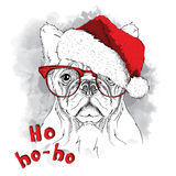 The christmas poster with the image dog portrait in Santa`s hat. Vector illustration. Stock Images
