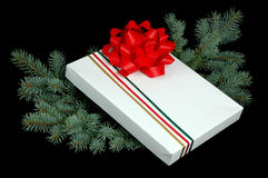 Christmas Present. Christmas gift nestled in blue spruce boughs Royalty Free Stock Photo