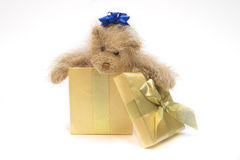 Christmas Present. Teddy bear in Christmas present Royalty Free Stock Photos