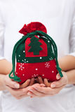 Christmas present in a bag Stock Photography