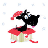 Christmas present with cute christmas dog. Black dog puppy sitting in a christmas present. Vector Illustration Stock Photography