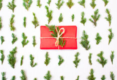 Christmas present in tree leaves. Stock Images