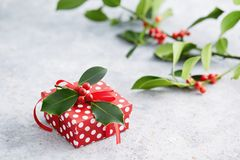 Gift wrapped in polka dot paper royalty free stock photo