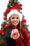 Christmas present for you. Sexy woman with a gift near the Christmas tree Royalty Free Stock Photo