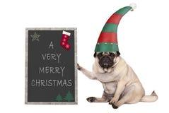 Christmas pug puppy dog sitting down, holding blackboardl, wearing elf hat. Isolated on white background Stock Images