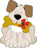 Christmas Puppy. A cute little puppy holding a bone with a Christmas bow on it Stock Image