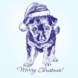 Christmas puppy in Santa stocking hat hand drawn Stock Image