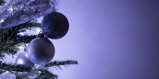 Christmas purple balls. Hanging on a Christmas tree royalty free stock photography