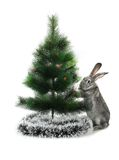 Christmas rabbit Stock Photo