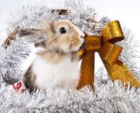 Christmas rabbit. With a christmas basket and gifts Stock Photo