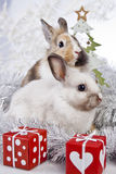 Christmas rabbit. With a christmas decorations and gifts Royalty Free Stock Photo