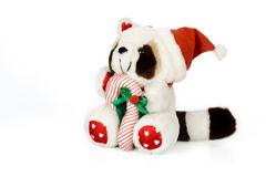 Christmas raccoon toy. With santa hat and candy cane Stock Image