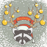Christmas raccoon vector Royalty Free Stock Photos