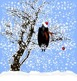 Christmas and a raven. Snow, a raven sitting on a tree, dressed in a costume of Santa Royalty Free Stock Image